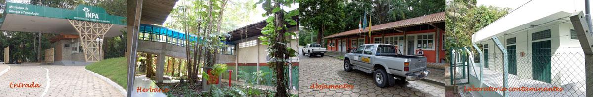 Instituto Nacional da Amazonia